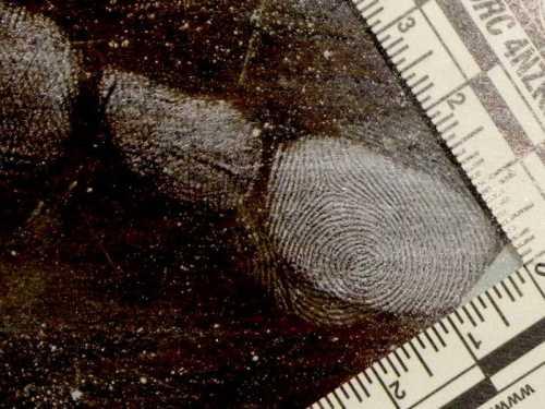 salvatore musio criminalistica-forense dattiloscopia 010