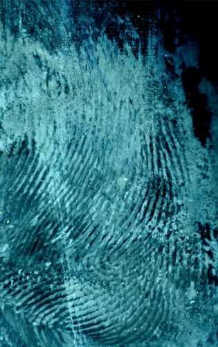 salvatore musio criminalistica-forense dattiloscopia 012